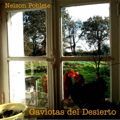 Gaviotas del Desierto. Album 2013